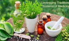 Leveraging Traditional Systems of  Indian Medicine, AYUSH - Sakshi Post