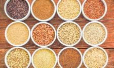 Millets in daily diet will fight malnutrition - Sakshi Post