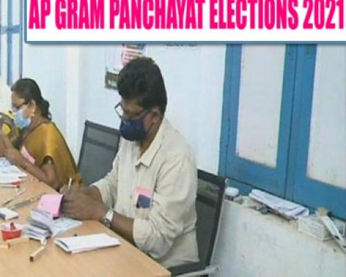 AP Panchayat Elections 2021: All You Need to Know On How to Cast Your Vote - Sakshi Post