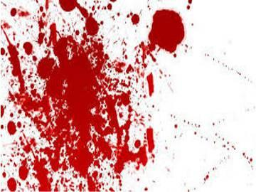 Man Murders Father, Sister-in-law - Sakshi Post