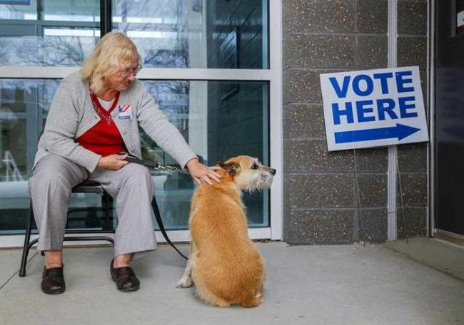 An elderly voters at a polling station in the USA - Sakshi Post