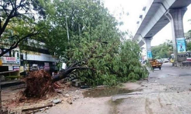 The city was thrown out gear with heavy rainfall and gales on Tuesday and Wednesday - Sakshi Post