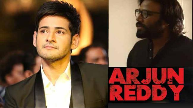 While anchor-turned-actress Anasuya Bharadwaj is venting her anger over the Sandeep Vanga's film — 'Arjun Reddy' in a prime-time news show on Friday evening, Tollywood Prince Mahesh Babu termed the movie as terrific.   - Sakshi Post