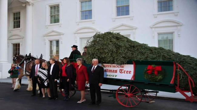 The former Slovenian model toured each of the decorated rooms and wished the public a Merry Christmas, who had received with her the official White House Christmas tree - Sakshi Post