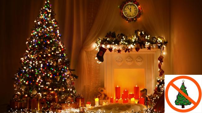 China Bans Sale Of Christmas Trees Over Cleanliness - Sakshi Post