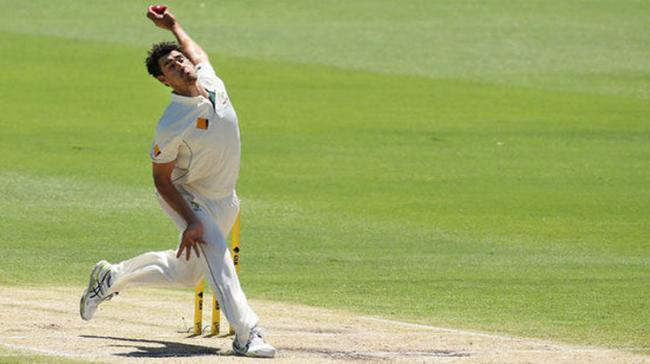 """Disappointed That Perth Wicket Was Rated """"Average"""" By ICC: Starc - Sakshi Post"""