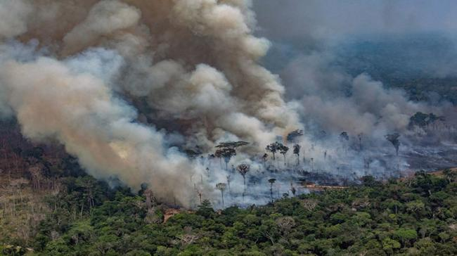 Amazon Fires: Brazil Rejects G7 Aid - Sakshi Post