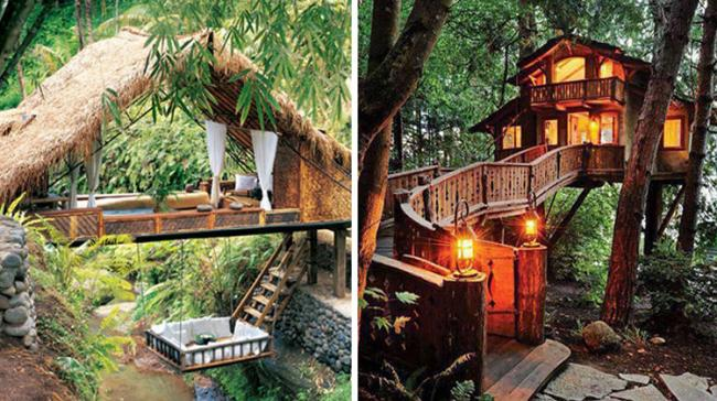Tree House Resorts For Nature- Lovers To Visit In India - Sakshi Post