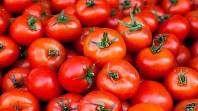 AP CM Orders Purchase Of Tomatoes With Immediate Effect - Sakshi Post