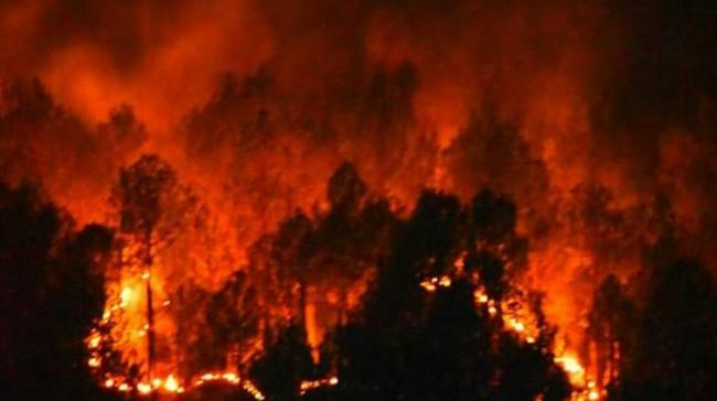 50 Houses Gutted In Tanuku Fire - Sakshi Post