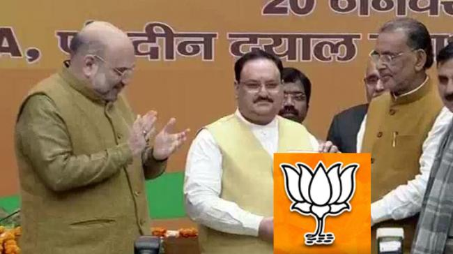 JP Nadda Elected Unopposed As BJP President - Sakshi Post