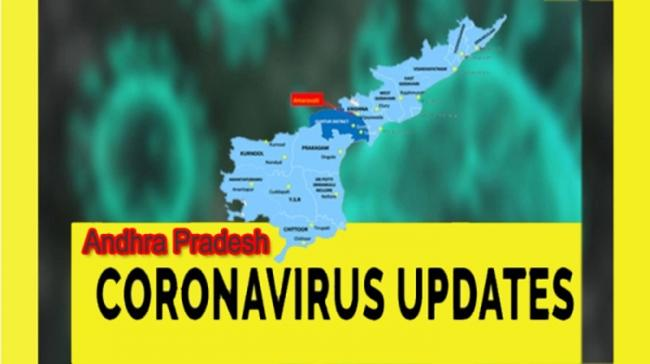 Andhra Pradesh Coronavirus Case Updates - Sakshi Post