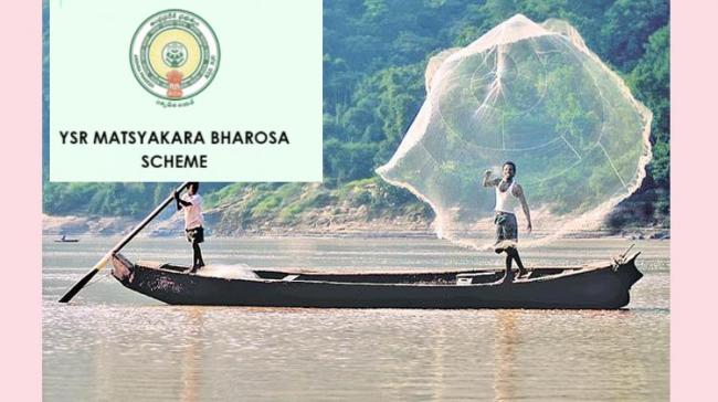 Third tranche of  Rs 130 Crore To Be Credited  Into Fishermen's Account On May 18, 2021 - Sakshi Post