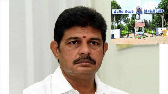 YSRCP Rubbishes TDP's Allegations Of Handing Over Sangam Dairy to Amul - Sakshi Post
