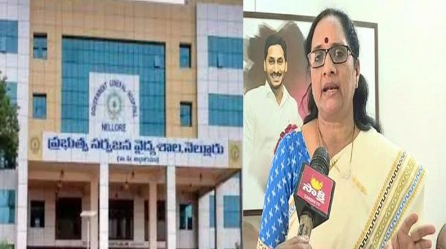 Committee Formed To Probe Alleged Sexual Misconduct By Nellore GGH Superintendent - Sakshi Post