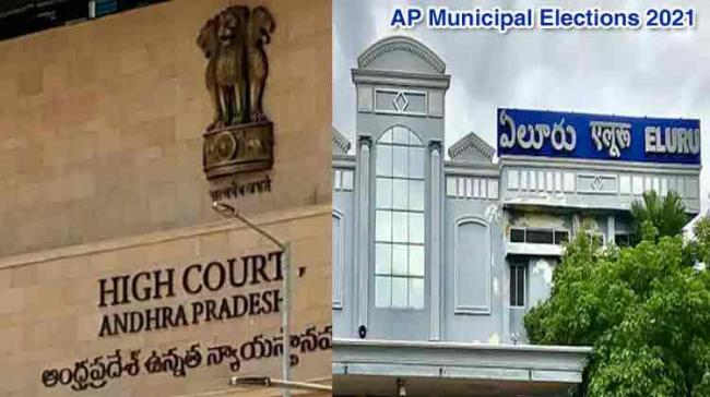 Andhra Pradesh: SEC issues orders for counting of Eluru Municipal Elections on July 25 - Sakshi Post