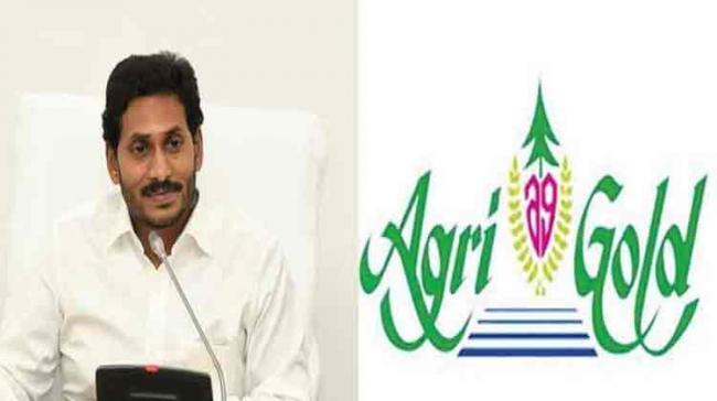 AgriGold Scam: TDP Issued GO To Compensate Victims Just Two Months Before 2019 Elections - Sakshi Post