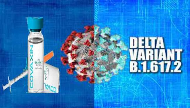 Bharat Biotech's Covaxin effective against Delta Plus variant of COVID-19: ICMR study - Sakshi Post