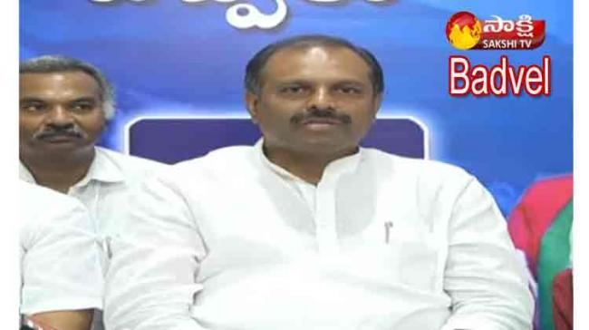 Badvel Bypolls: YSRCP Will Win With Huge Margin, Says AP Chief Whip - Sakshi Post